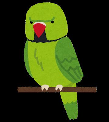 bird_wakakehonsei_inko