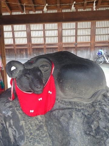 撫で牛20150328_3