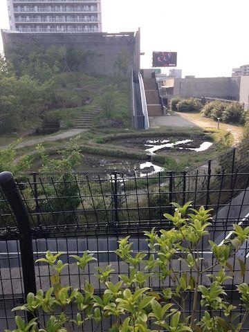 目黒空中庭園20160507_014