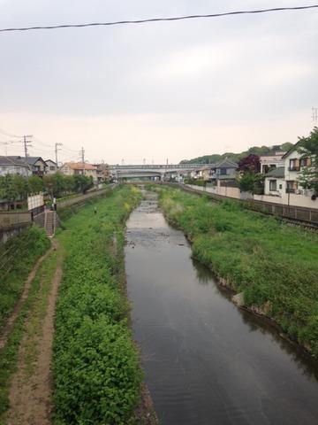 野川20150425