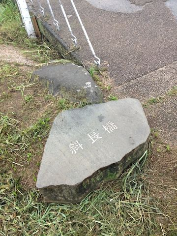 多摩川20150830_10