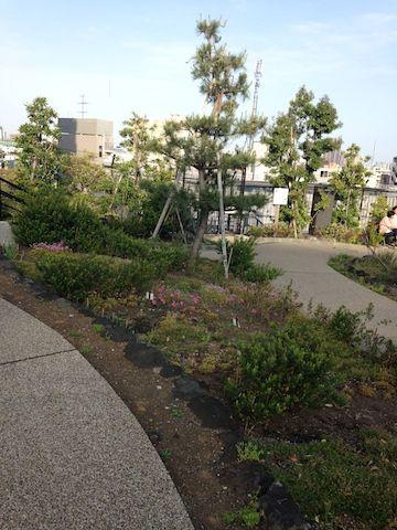 目黒空中庭園20160507_012