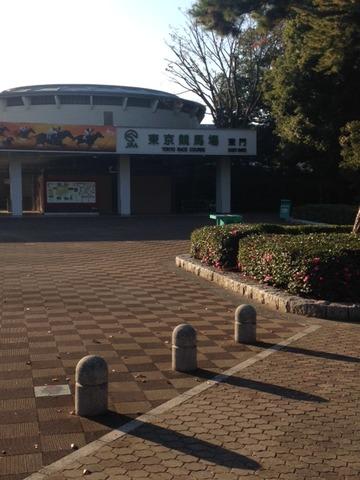 府中競馬場20141122_1