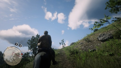 Red Dead Redemption 2_20210731211114