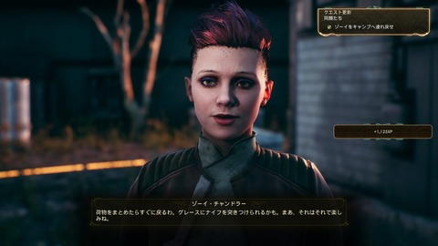 The Outer Worlds_20191103102643