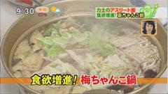 大嶽部屋(おおたけべや)の夏ちゃんこ鍋 【梅ちゃんこ】