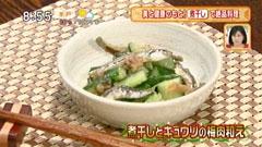 日本料理 賛否両論 【煮干しとキュウリの梅肉和え】