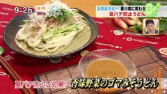 香川・愛媛せとうち旬彩館 【香味野菜のゴマみそうどん】