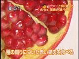 種の周りについた赤い粒状の果肉を味わうザクロ