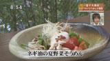葱屋福 【夏野菜そうめん】