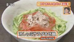 自家製麺ほうきぼし 【冷しゃぶサラダまぜ麺】