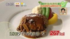 自家製ダイエットハンバーグ(1人前267kcal)