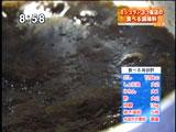 神楽坂 石かわ 【食べる海苔酢】