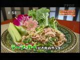 ピッチーファー 【ラープガイ(ひき肉のサラダ)】