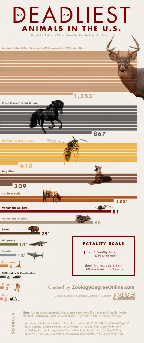 deadliest-animals-in-the-us_502918a1596ab_w1500