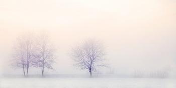 白くかすむ景色