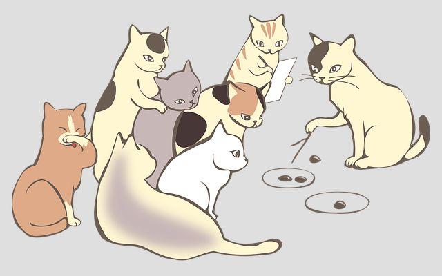 猫達の会議