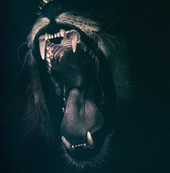 ライオンの口