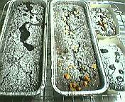 園山真希絵の汚料理はオカルトっていうかグロ3皿目YouTube動画>2本 ニコニコ動画>1本 ->画像>730枚