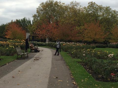 Regents Park_garden4