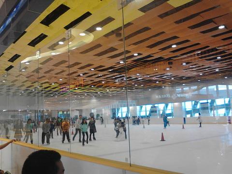 SM_skate