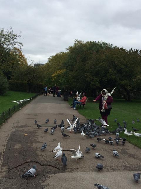 Regents Park_garden5