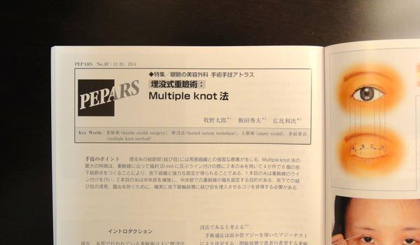 PEPARS SMK003