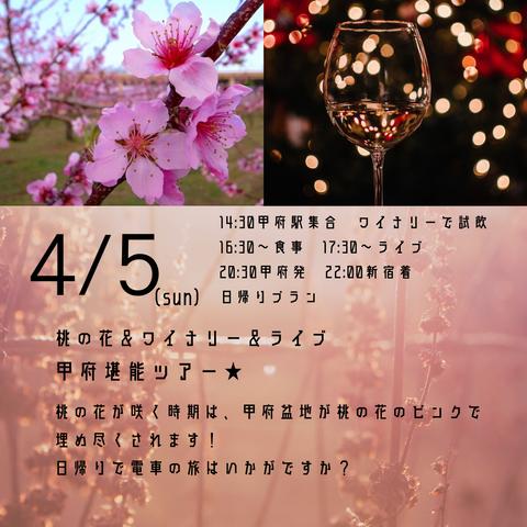 4_5桃の花ライブ