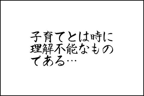 oto-113_001-min