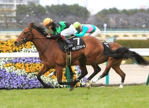 1 競馬 キタノコマンドール