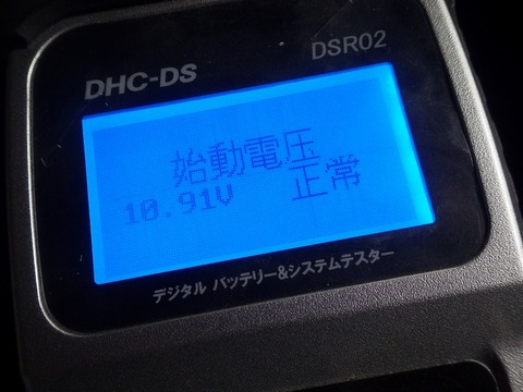 IMGP6966