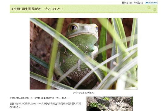 札幌市円山動物園 は虫類・両生類館オープン