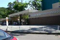 2009/7/17 円山動物園