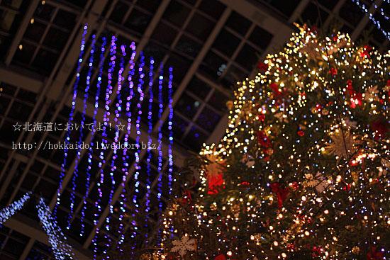 2011年 サッポロファクトリーのクリスマスツリー