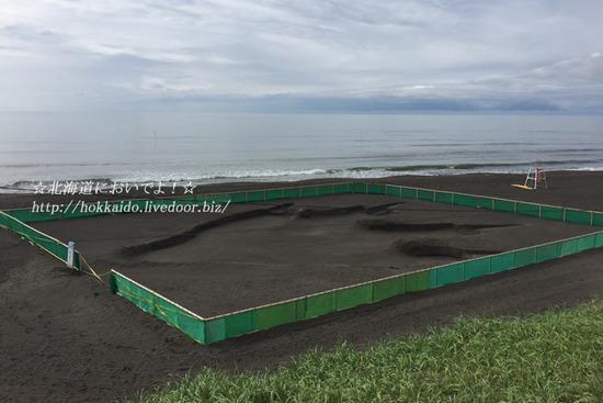 いしかり浜サンドパーク「シン・ゴジラ」の足跡