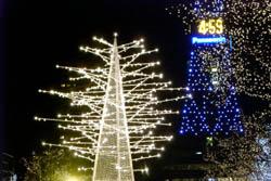 札幌市大通公園 ホワイトイルミネーションの点灯式2008の様子