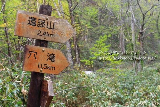 穴滝まで0.5kmの看板