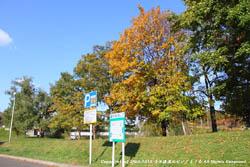2010年10月14日(木)真駒内公園