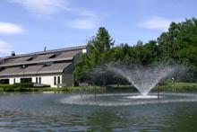 緑ヶ丘公園の湖