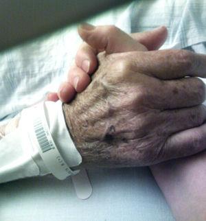24505父の手