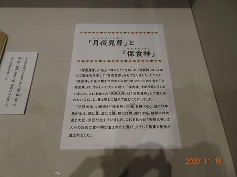 DSC06185