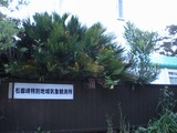 s-石廊崎特別地域気象観測所