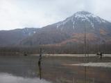 �大正池と焼岳