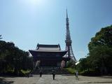 s-増上寺と東京タワー