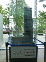 s-P1100663