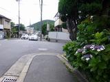 s-衣笠山P1050154