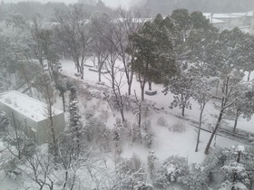 Photo Feb 14, 3 12 35 PM