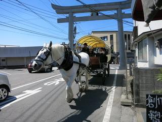 観光馬車が走る
