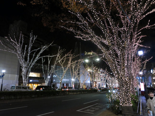 表参道ライトアップ