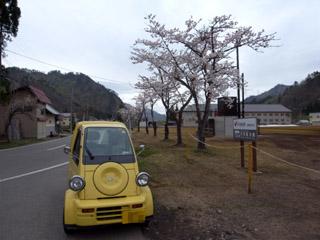 ふもとの桜
